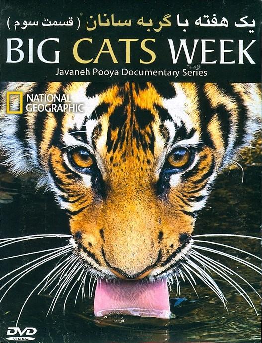 خرید فیلم مستند یک هفته با گربه سانان (قسمت سه)