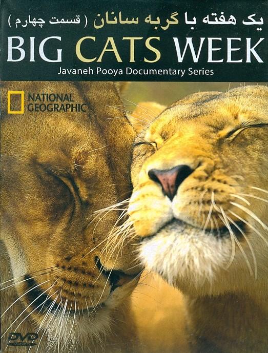 خرید فیلم مستند یک هفته با گربه سانان (قسمت چهار)