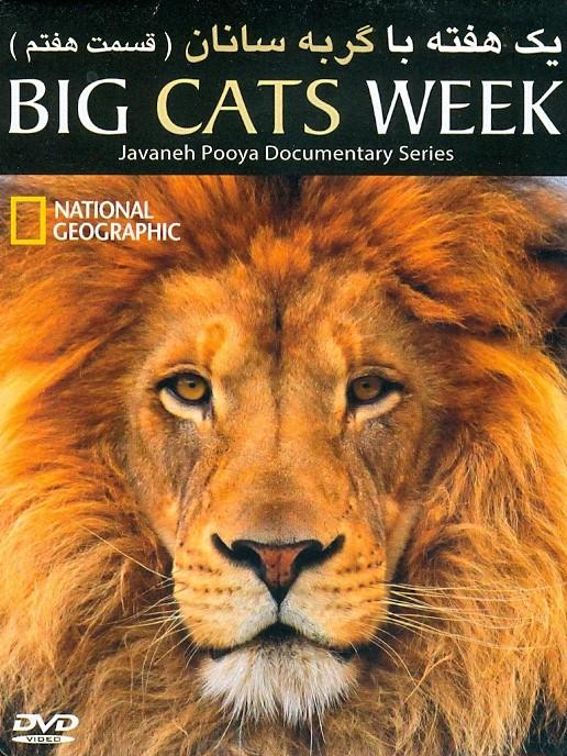 خرید فیلم مستند یک هفته با گربه سانان(قسمت هفت)